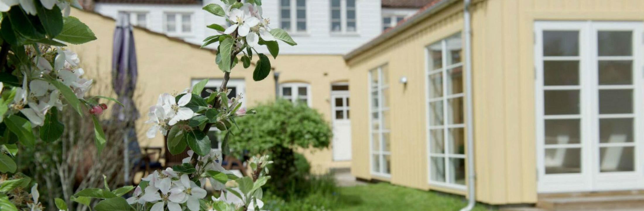 Indre ro Odense udendørs